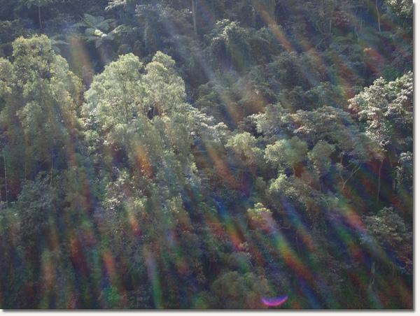 窗前山景2.jpg