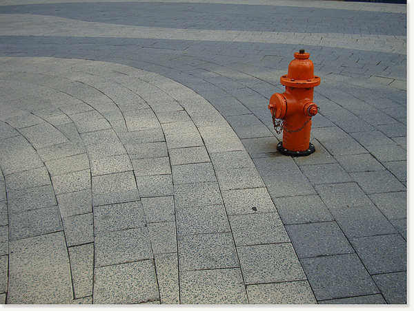 walking in NY56.jpg