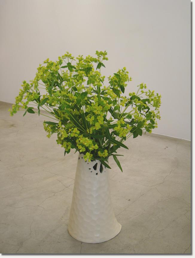 花的顏色07.jpg