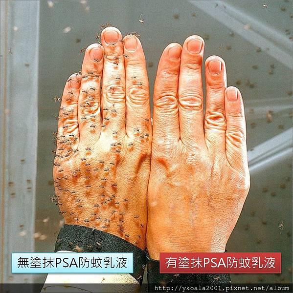 PSA防蚊液-實驗測試圖.jpg
