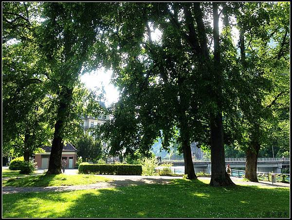 IMG_6083a