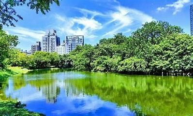 大安森林公園一隅th[1].jpg