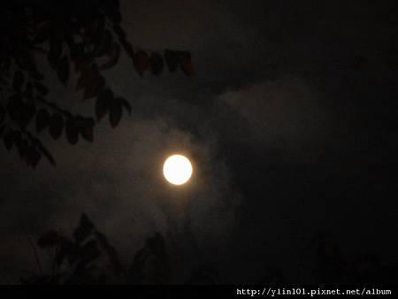 月光八月十四