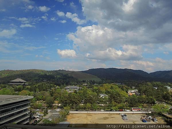奈良縣廳屋上廣場 view