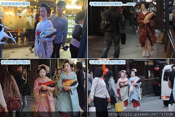 京都 祇園藝妓