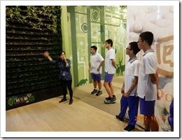 植生牆,牆上掛滿了綠色小盆栽