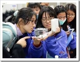 中華大學螞蟻王國教學教具