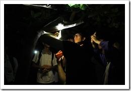 1070427櫻花杜家村夜間動物觀察