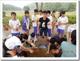 1070428銘泉農場同學實施鳳梨摘植