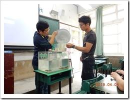 講師親自將台灣原生魚類帶入講堂向學生介紹