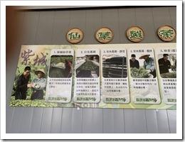 紫城農場的仙草製茶看板