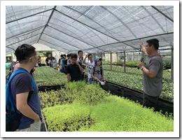 紫城農場係楊梅區最大的苗圃產地