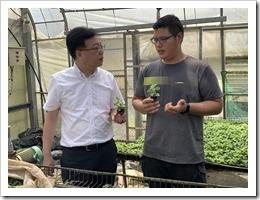 鄒校長與紫城農場探討仙草植物作物栽培