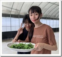 學員很高興地完成青菜的烹煮