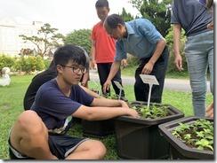 作物栽植與標號與整理