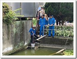05-大華高中於幼獅工業區放流池實施水質採樣