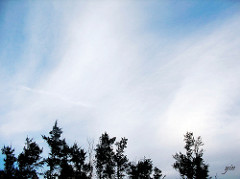 wind, cloud, blue sky in 三芝海邊