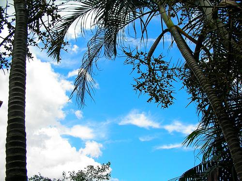 颱風沒來,但天空被吹得很乾淨