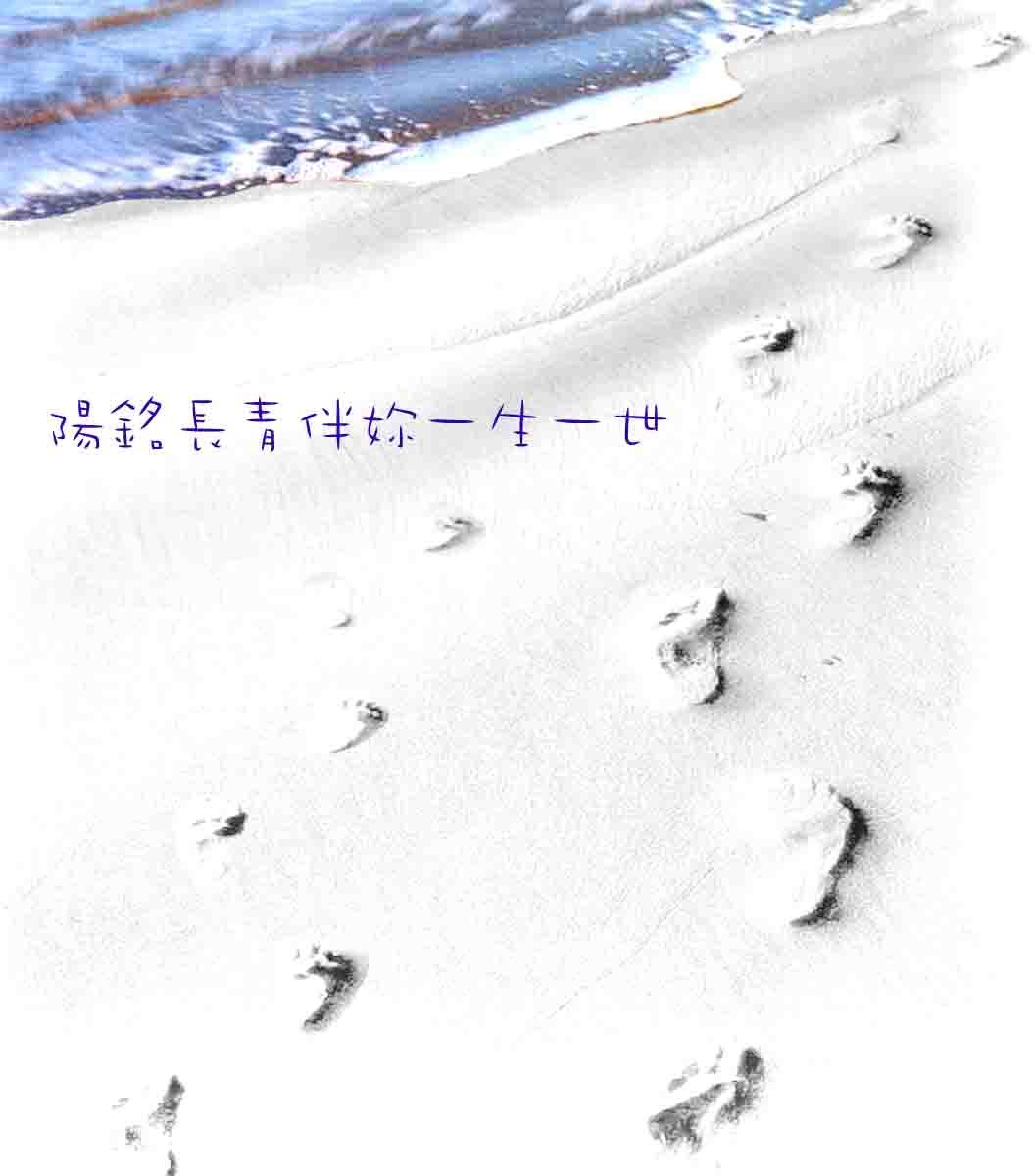後標-2.jpg