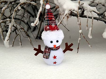 snowman-1145323_1280.jpg