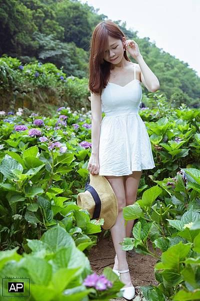 欸比-陽明山高家繡球花+黑森林 (13).jpg