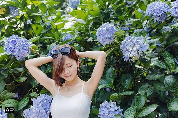 欸比-陽明山高家繡球花+黑森林 (22).jpg