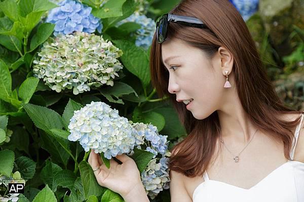 欸比-陽明山高家繡球花+黑森林 (36).jpg