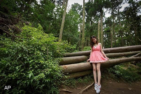 欸比-陽明山高家繡球花+黑森林 (45).jpg