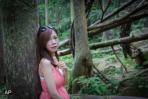 欸比-陽明山高家繡球花+黑森林 (52).jpg