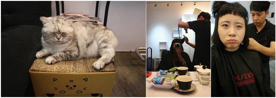 MingLi ming154cm google pixnet facebook Vis Salon 台北 中山 資生堂專櫃髮廊 燙髮護  (7)