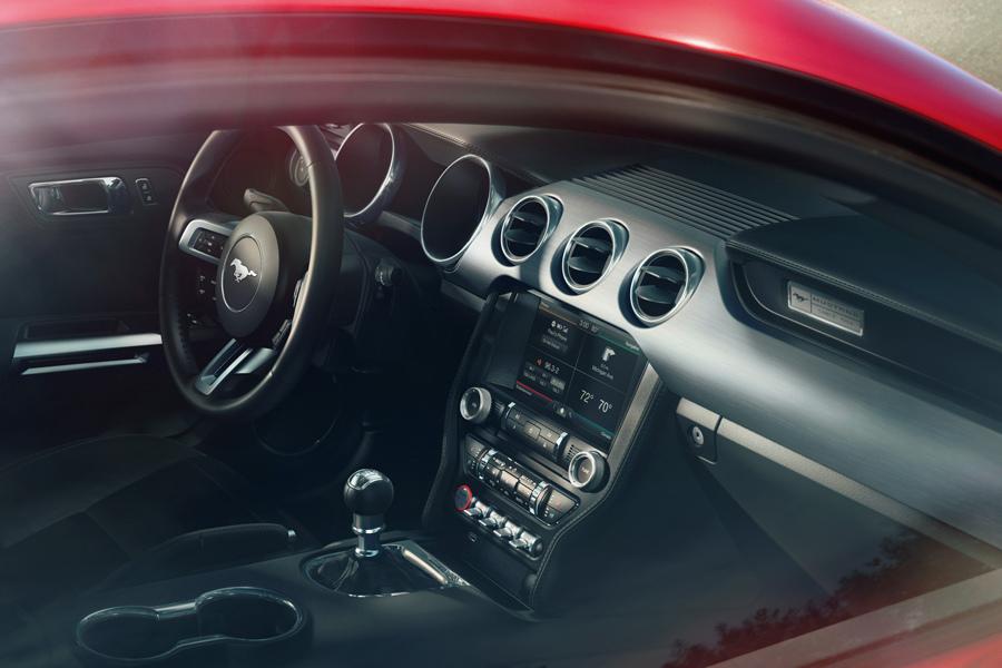 Mustang 05.jpg