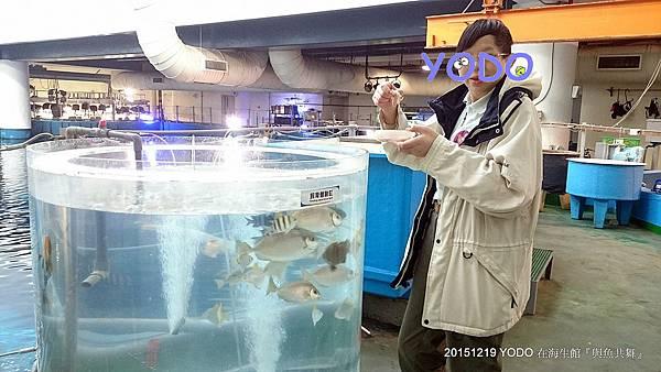 20151218-墾丁2日遊_6237.jpg