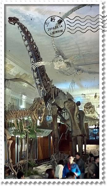 土銀博物館-恐龍.jpg