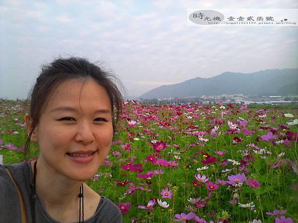 2012新社花毯節11
