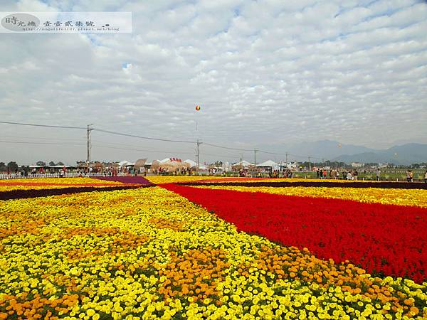 2012新社花毯節25