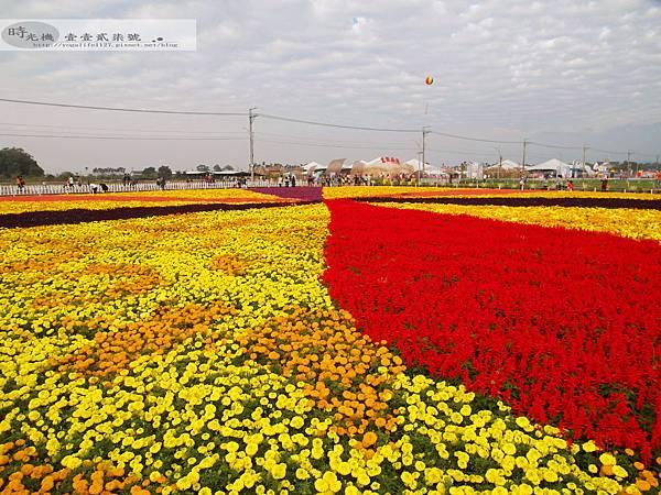2012新社花毯節26