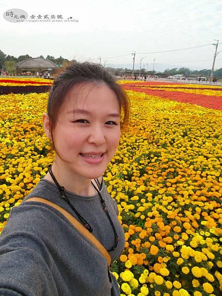 2012新社花毯節35