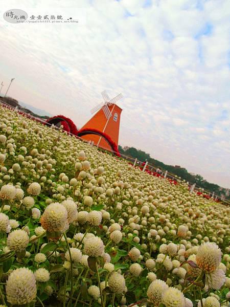 2012新社花毯節37