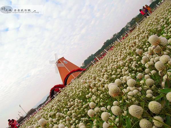2012新社花毯節38