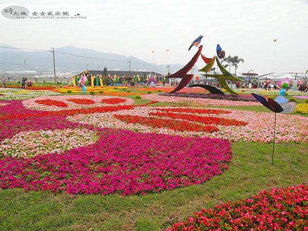 2012新社花毯節44