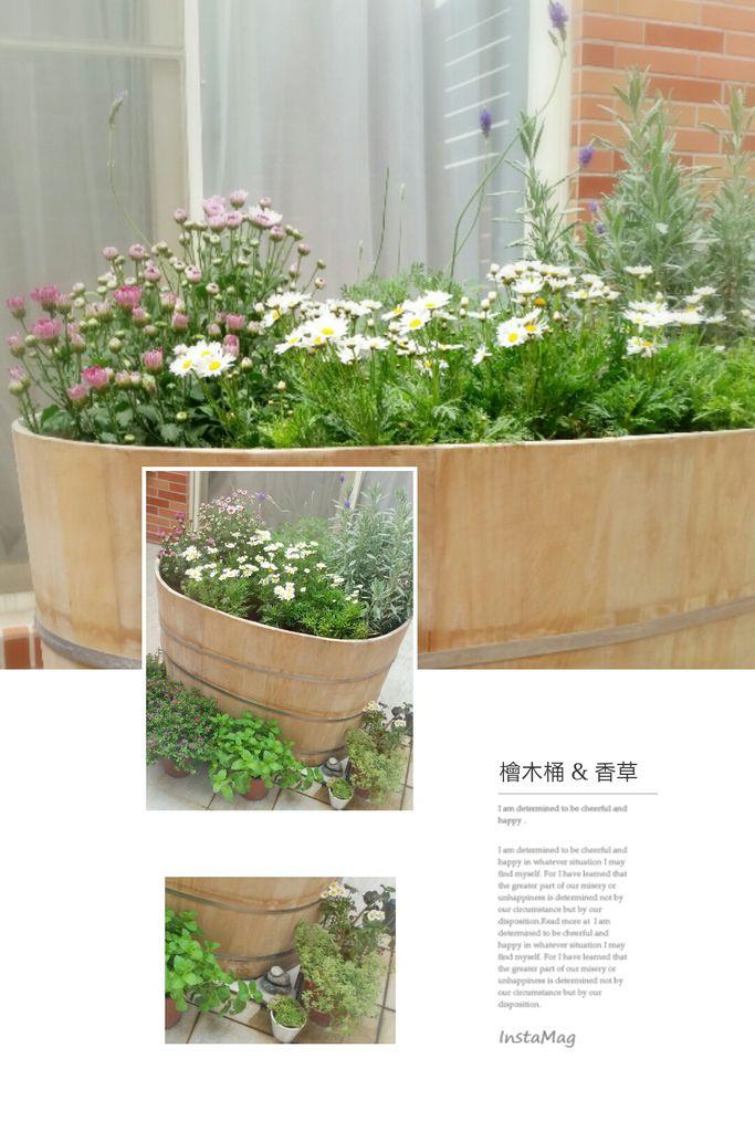 檜木桶&香草
