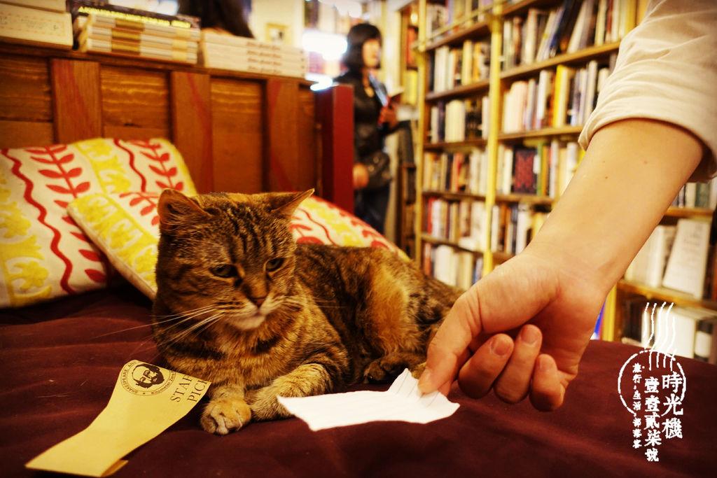 莎士比亞書店 (21).JPG