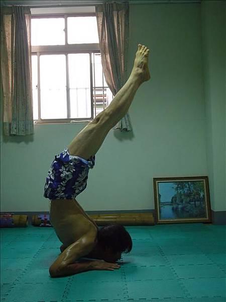 哈達瑜珈之光一書中