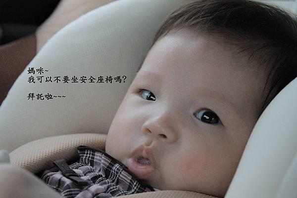 IMG_7068.jpg