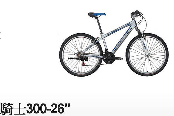 騎士300-1.jpg