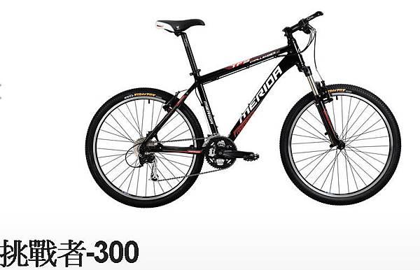 挑戰者-300-4.jpg