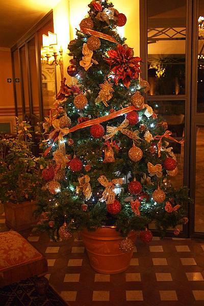 20121211-062. 聖誕樹