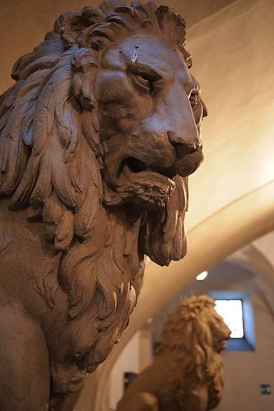 20121212-041. 好有威嚴的獅子