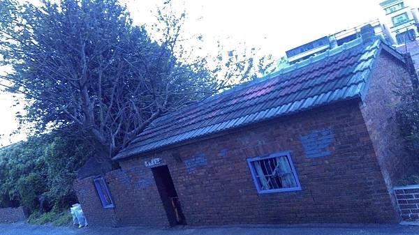 孵化BAR-遠眺樹屋