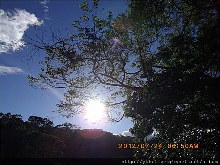 2012-07-24-06-50_31